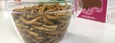 Insectos y gusanos comestibles de Carrefour: los probamos y los analizamos nutricionalmente