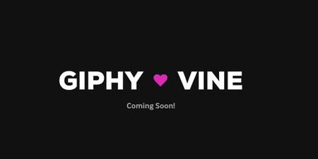 Giphy quiere tus Vines, y ha creado una herramienta para que los lleves a su servicio