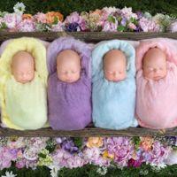 Las más adorables fotos de cuatrillizas idénticas, un caso que se da entre 64 millones de nacimientos