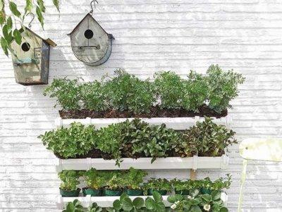 Huertoadictos, decoración y alimentación ecológica en tu balcón