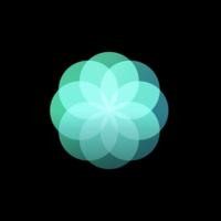 Un cuarto anillo podría llegar a Actividad en el Apple Watch: Atención plena