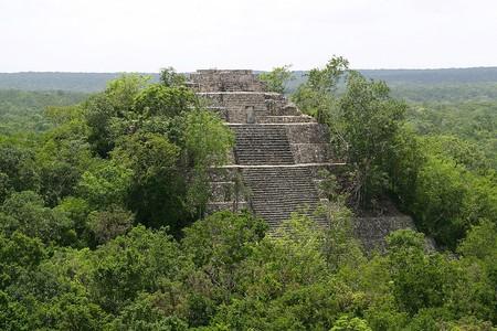 Ruinas Mayas Vegetacion