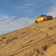 Foto 25 de 25 de la galería volkswagen-beetle-dune en Usedpickuptrucksforsale