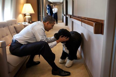 Obama 12