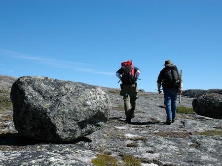 Se encuentra la evidencia de vida más antigua en la Tierra