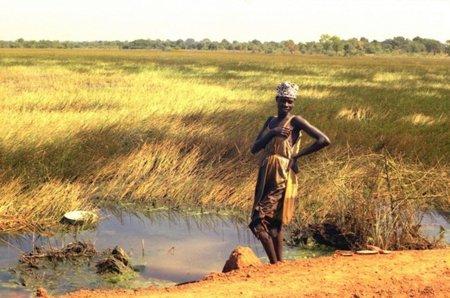 ACTA se presenta en África de la mano de los lobbies