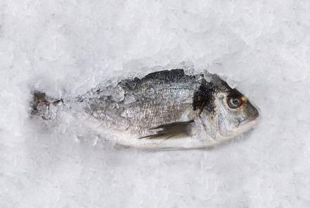 No, no vas a pillar Anisakis comiendo pescado bien congelado o cocinado: esto es lo que debes hacer