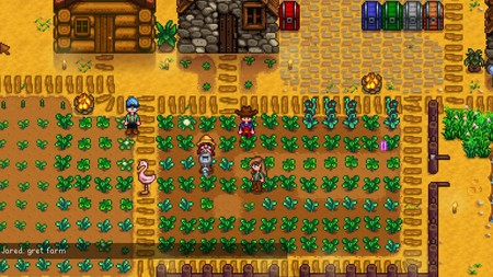 Stardew Valley Multijugador 02