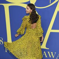 CFDA Awards 2018: 11 melenas espectaculares de la alfombra roja