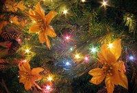 Se acercan las navidades, aprovecha tus dotes fotográficas para sorprender a tus allegados