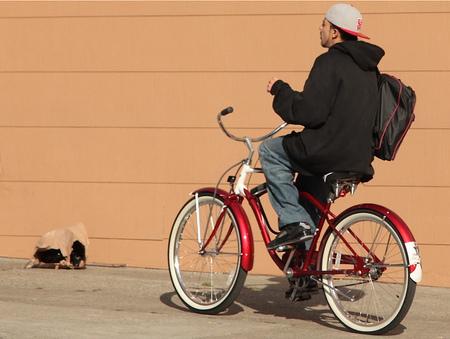 """Las ciudades más """"bici-friendly"""" de Estados Unidos"""