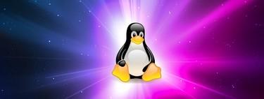 El mundo Linux se tambalea ante un nuevo código de conducta que plantea el fin de la meritocracia