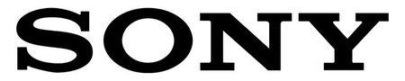 Sony se introduce en el mercado de la baterías de iones de litio