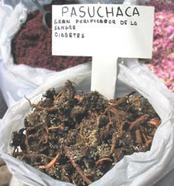 Image result for pasuchaca