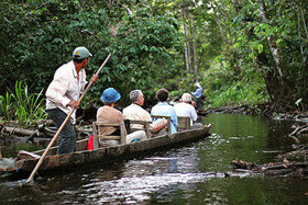 Amazonia 2