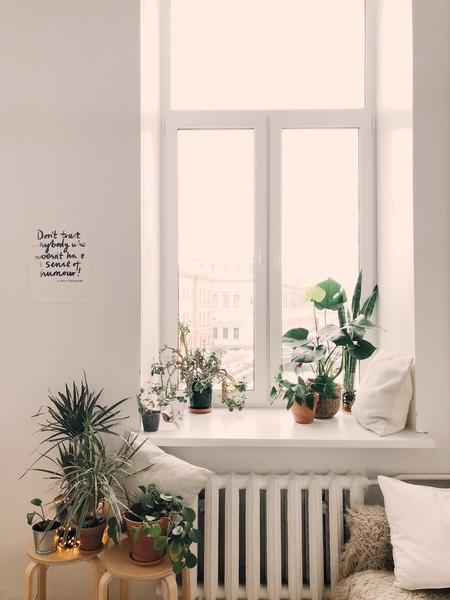 Verano Airbnb 3