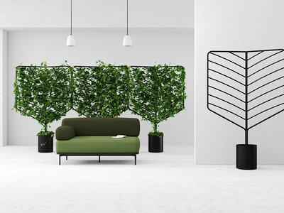 """Plantas convertidas en """"paredes verdes"""", un separador de espacios sencillo y natural"""