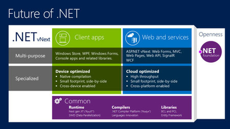 Future of .NET