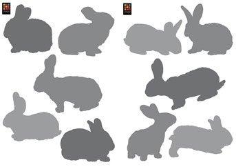 Vinilos de conejos de Plage