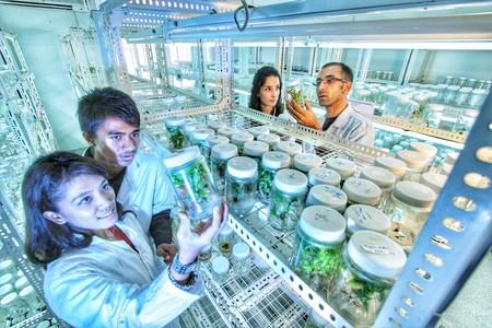 Los Agripreneurs Toman La Agricultura Al Asalto Con La Ciencia La Tecnologia Y El Big Data Como Sus Mejores Armas 4