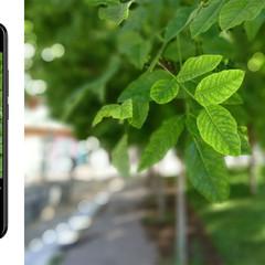 Foto 5 de 26 de la galería blu-vivo-fotografias en Xataka Android