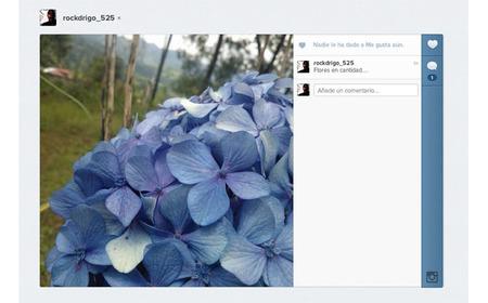 """Instagram añade comentarios y """"likes"""" en su interfaz web"""