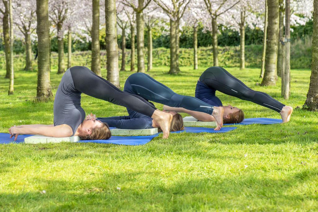 Cinco posturas de Yoga que te ayudan a aliviar el dolor de espalda