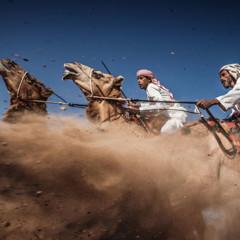Foto 6 de 10 de la galería concurso-de-fotografia-national-geographic en Trendencias Lifestyle