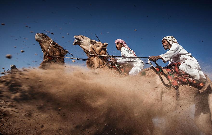 Foto de Concurso de fotografía National Geographic (6/10)