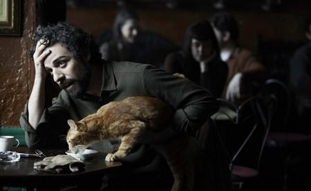 Llewyn Davis y su gato