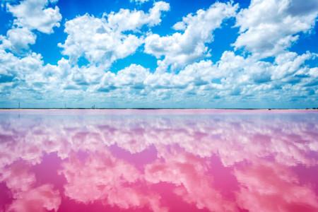 En México hay una fascinante laguna rosa que es como un cuento de hadas en la realidad