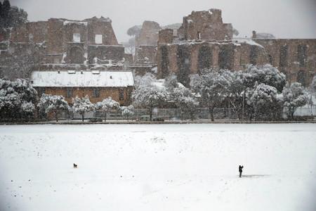 Roma Nieve 2