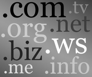 La organización que asigna dominios en Internet podría perder su licencia