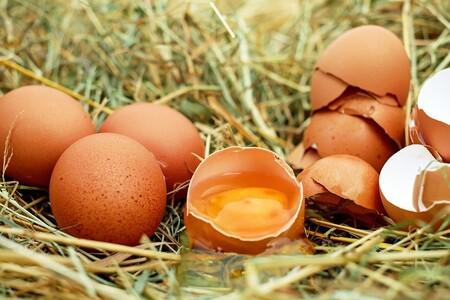 Huevo: mitos y realidades