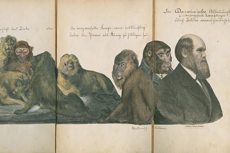 Darwin Hijos 3