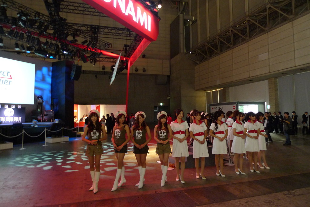 Foto de Chicas del Tokyo Game Show 2009 (20/28)