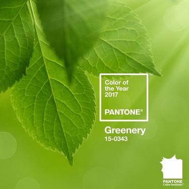 Verde que te quiero verde... El color de 2017 según Pantone será el Greenery