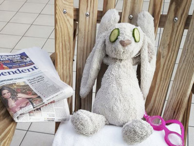 La fantástica historia de las vacaciones de un conejo de peluche olvidado en un hotel