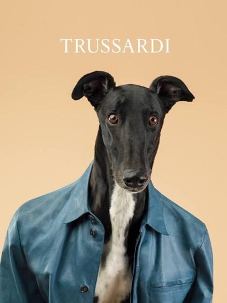 Trussardi y sus nuevos top models, ¡que tiemble Velencoso!