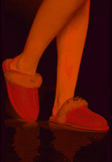 Zapatillas Ugg 1