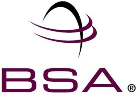 """La BSA calcula que cada ordenador con software """"pirata"""" le cuesta 5.000€ a sus socios"""