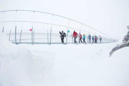 Un puente colgante suizo que pone a prueba a los visitantes