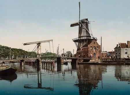 Molinos En Haarlem