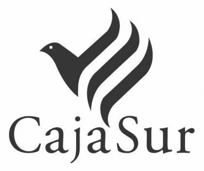 Nuevo Director General para Cajasur