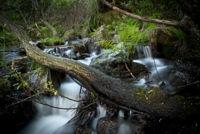 Consejos para recorrer Somosierra, la parte norte de la Sierra de Guadarrama