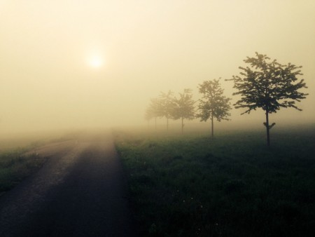 Fog 398568 960 720