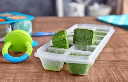Alimentos Puedes Convertir Cubos De Hielo Para Comer Despues Papillas