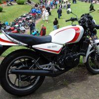 Yamaha RZR900, ¿nueva versión de la Yamaha RD?