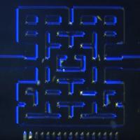 Los organismos microscópicos también saben jugar al Pacman