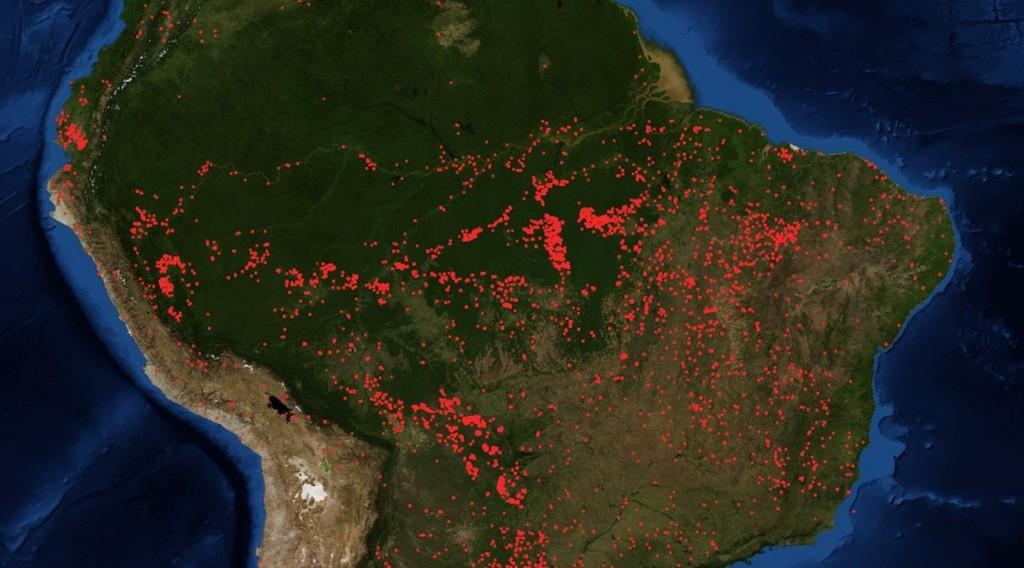 72.843 incendios en Amazonas a lo largo de 2019: Brasil está atravesando la mas grande ola de incendios y deforestación de los últimos años